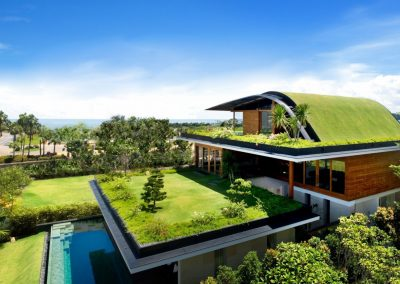 house-grass-pool-landscape-green